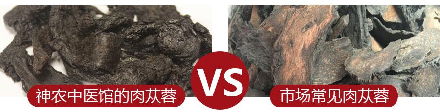 肉苁蓉与市场常见品对比_神农中医馆
